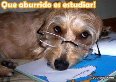 ..[ DiaRio De Clase ]..